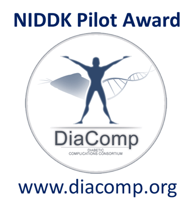 DiaComp :: Conference Support Program